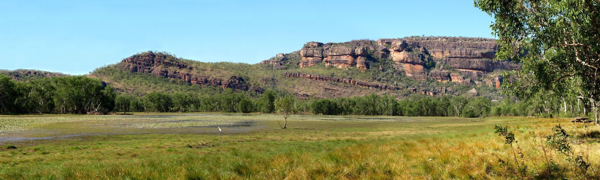 wlaking tracks and trails at anbangbang billabong in Kakadu